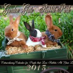 Extraordinary Rabbit Park Calendar for 2013